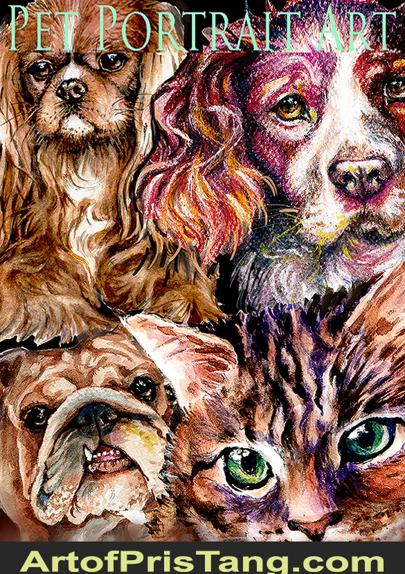 Colorful Collage of dogs and a cat