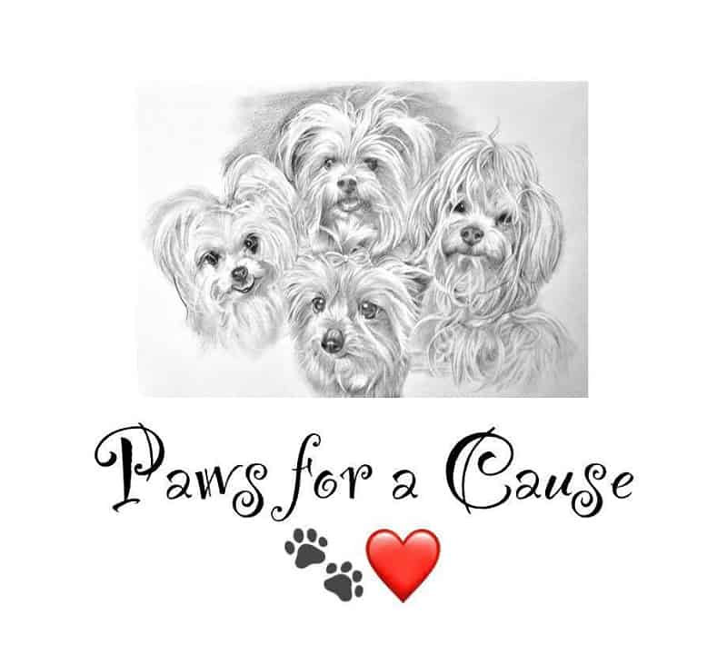 Paws for a Cause Dog Rescue